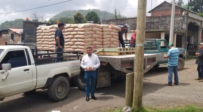 Paco Cedillo entrega 36 toneladas de cemento a bajo costo en la comunidad de Angahuan